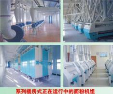 大型楼房式面粉加工设备
