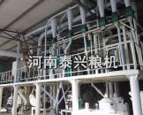 河北50吨玉米加工设备