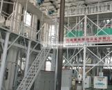 山东德州100吨玉米加工设备安装