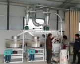 鹤壁淇县双组石磨面粉机成功案例